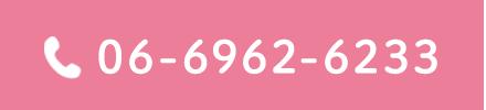 06-6962-6233